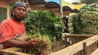 Pedagang Pasar Sayur Kedungrejo, Sahri